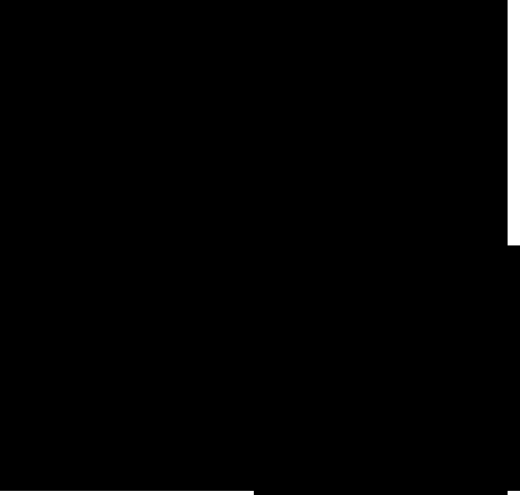 estrella_2